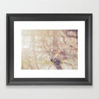 Dappled  Framed Art Print