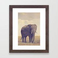 The Biggest Elephant in Botswana Framed Art Print