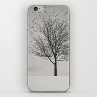 Feathered Branches iPhone & iPod Skin