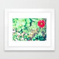 Ruby Petals Framed Art Print