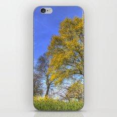 English Summertime Farm iPhone & iPod Skin