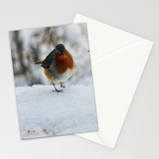 PHOTOGRAPHY-Robin Redbreast Stationery Cards