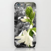 iPhone & iPod Case featuring Green & White by Roger Branker Photography