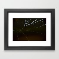 Watery Web Framed Art Print
