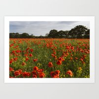Field Of Red Poppies In … Art Print