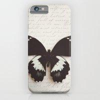 Papilio Aegus Butterfly iPhone 6 Slim Case