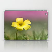 Yellow on Pink Laptop & iPad Skin