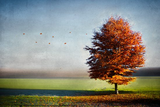dressed in autumn Art Print