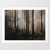 Sunrise through the woods Art Print