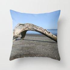 Drift Arch Throw Pillow