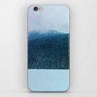 Oregon Winter iPhone & iPod Skin