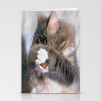 My Cat Actually Sleeps This Way Stationery Cards