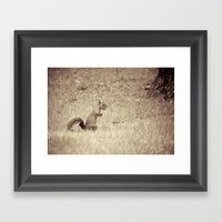 Nuts Framed Art Print