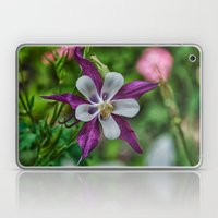 The Garden Star Laptop & iPad Skin