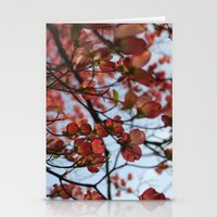 Pink Dogwood Stationery Cards