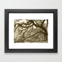 WaterOak Framed Art Print