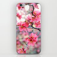 Evening Quince iPhone & iPod Skin