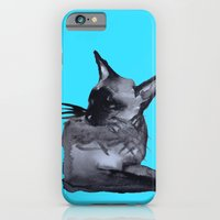 """iPhone & iPod Case featuring """"We are Siamese if you Please""""  by Holly Lynn Clark"""