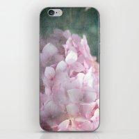 ...a kiss through a veil... iPhone & iPod Skin