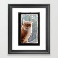 Ginger Cat  Waiting By T… Framed Art Print
