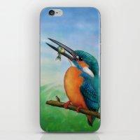 Common Kingfisher iPhone & iPod Skin