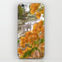 Touch of warmth iPhone & iPod Skin