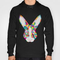 Rainbow Rabbit Hoody
