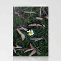 The Lone Flower Stationery Cards