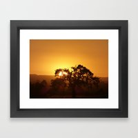 Napa Valley  Framed Art Print
