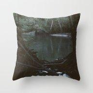 Drabby Swampy Creek Throw Pillow