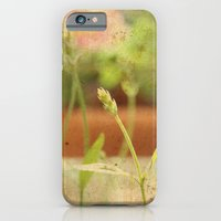 Anarchy in Planter iPhone 6 Slim Case