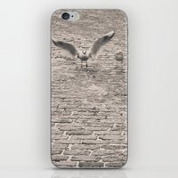 Bird2 iPhone & iPod Skin