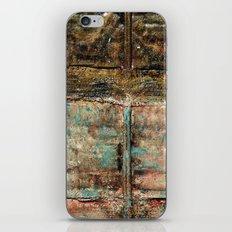 Intertwined iPhone & iPod Skin