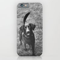 Dog 1 iPhone 6 Slim Case