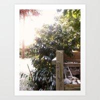 Sun and Snow Art Print
