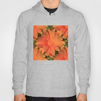 Orange Daisy Hoody