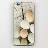Eggs in one basket iPhone & iPod Skin