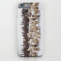 Snowy Sheep Stare iPhone 6 Slim Case