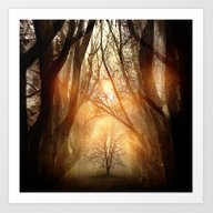 Art Print featuring Searching Dreams Lost by Viviana Gonzalez