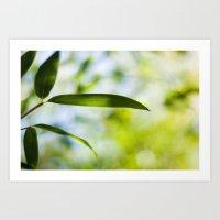Bamboo Leaf Art Print