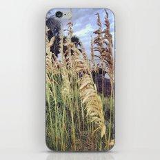 Beach Wheat iPhone & iPod Skin