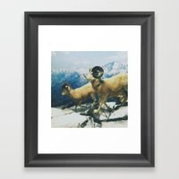 Museum Wildlife Framed Art Print