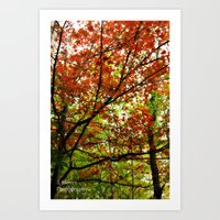 Chilly Moments Art Print