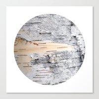 Planetary Bodies - Birch Canvas Print
