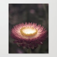 Place Setting Canvas Print