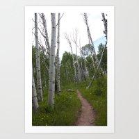 Sunday's Trail #2 Art Print