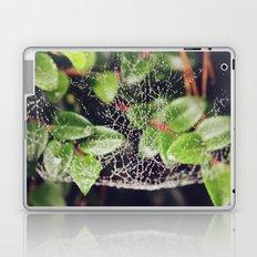 The Spider's Web Laptop & iPad Skin