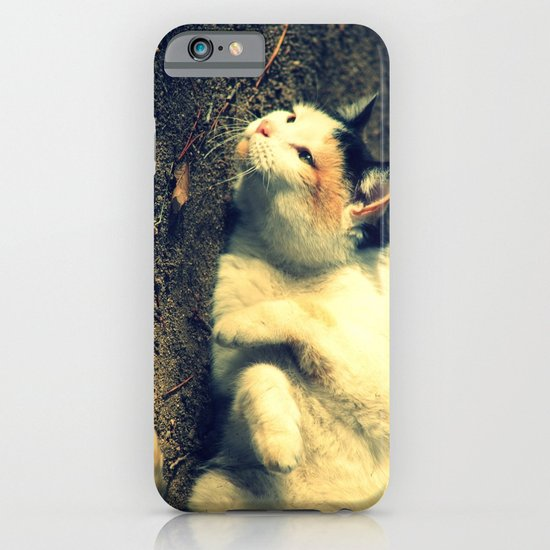 Tabby iPhone & iPod Case