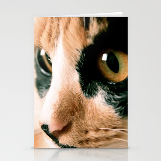 Thinking Cat Stationery Card
