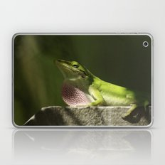 Mating Dance Laptop & iPad Skin